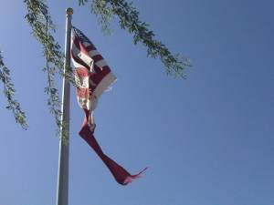 Torn US Flag in front of Mesa Post Office